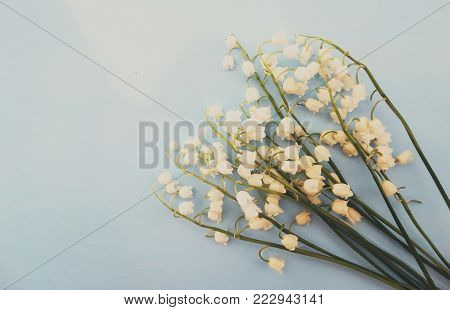 poster of Lily of the valley nature background wallpaper bloom spring season summer white green color flora botany bouquet