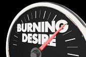 Burning Desire Speedometer Passion Wants Needs 3d Illustration poster