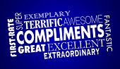 Compliments Word Collage Great Excellent 3d Illustration poster