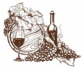 image of hand drawn  - Hand drawn grape and bottle of wine - JPG
