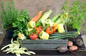 foto of wooden crate  - Fresh Herbs And Vegetables In Wooden Crate - JPG