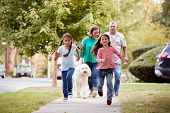 Grandparents And Granddaughters Walking Dog Along Street poster