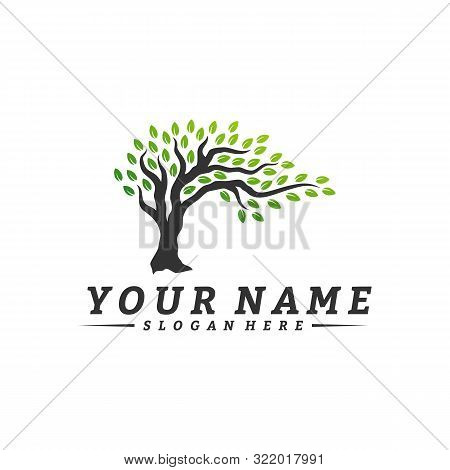 poster of Colorful Vibrant Tree Logo Design Concept Vector. Root Of Tree Life Logo Design Template Inspiration