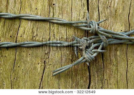 Barbed wire bow