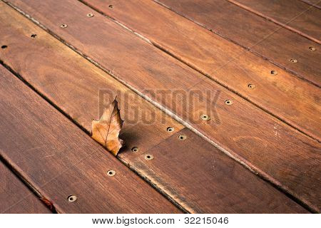Leaf Stuck In The Wooden Decking