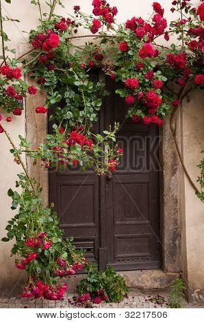 Red Roses Door