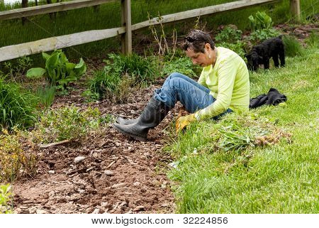 Lady Gardener Pulling Up Weeds In Flowerbed