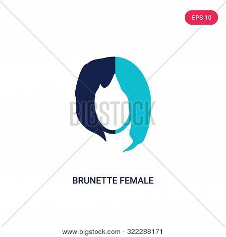 brunette female woman long hair icon in two color design style. poster