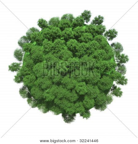 Green trees on small planet