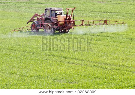 Agriculture In Spring