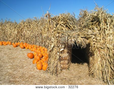CornCave With Pumpkins