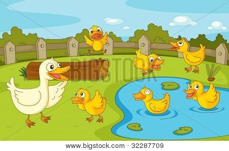 IIllustration of a family of ducks at the pond - EPS VECTOR format also available in my portfolio.