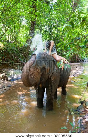 Elephant spraying water to woman during riding