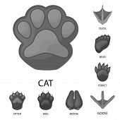 Isolated Object Of Wildlife And Trace Symbol. Collection Of Wildlife And Walk Stock Symbol For Web. poster