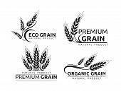 Premium Grain Flat Vector Logotype In Black Silhouette Designs Set. Organic Cereal Crops, Natural Pr poster