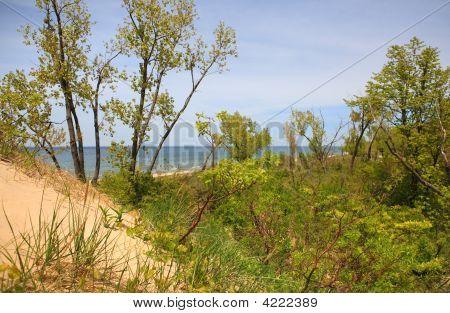 Lake Michigan View From The Top Of The Dune At Jean Klock Park, Benton Harbor, Michigan