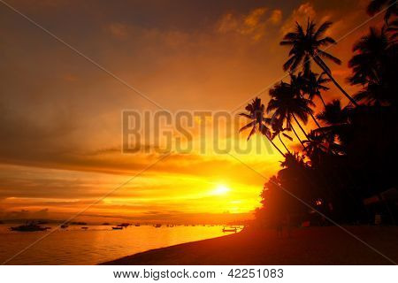 Sandy beach with palm trees at sunset time. Alona beach of Panglao island. Philippines
