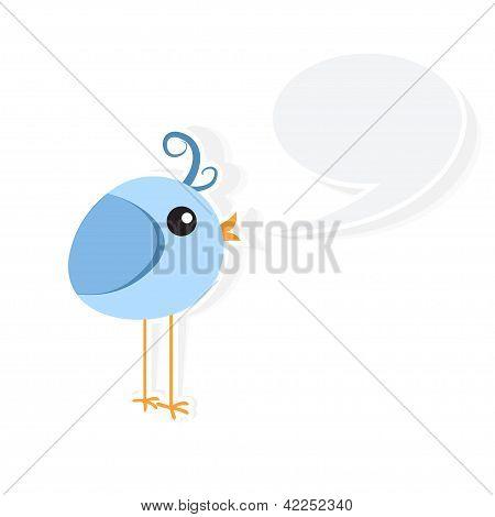 Birdy Talk