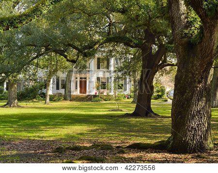 Audubon, New Orleans