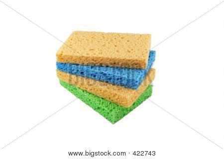 4  Sponges