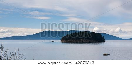 Tiny Island In Puget Sound