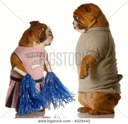 Bulldog Cheerleader And Jock