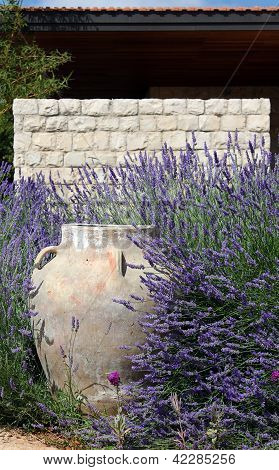 Jar Against Stonewall Amid Lavender