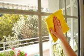 picture of maids  - a Woman cleaning a window in sunny day - JPG