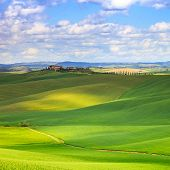stock photo of senesi  - Tuscany Crete Senesi country landscape Italy Europe - JPG