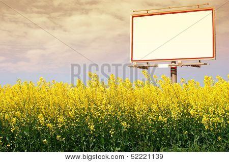 Blank White Billboard In A Rapeseed Field