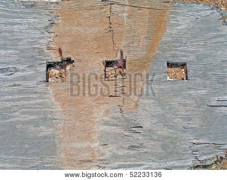 Desert weathered plywood