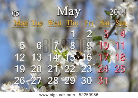calendar for the May of 2014 year