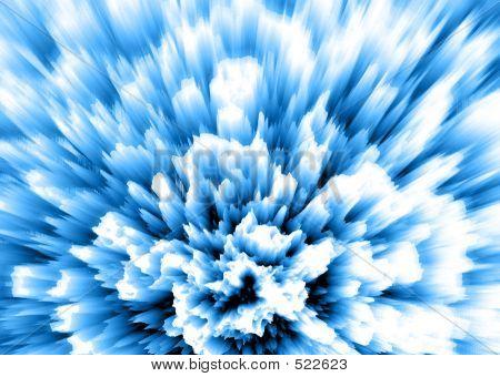 Carnation - Blue