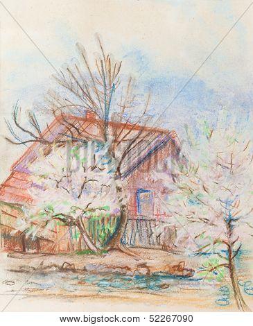 Flowering Of Plam Trees