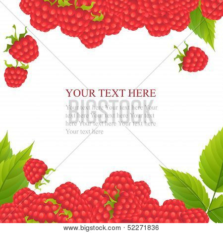 Ripe raspberries with leaves