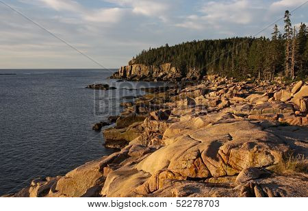 Acadia Coastline