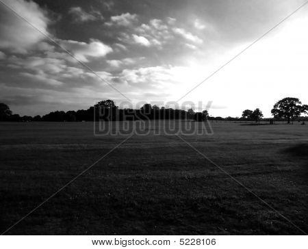 Lydiard Park Landscape
