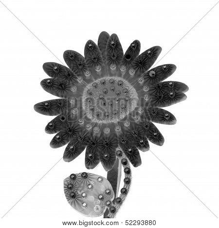 Electric Daisy Flower