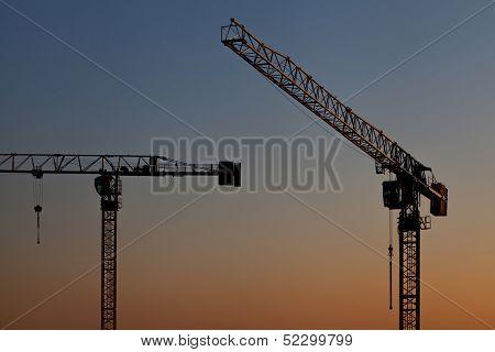 Cranes At Sunset