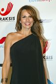 HOLLYWOOD - Patricia Kara arrives at the 2013 Philhellenes Gala benefiting Praksis at the SkyBar on