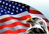 pic of waving american flag  - Bald eagle in front of an American flag - JPG