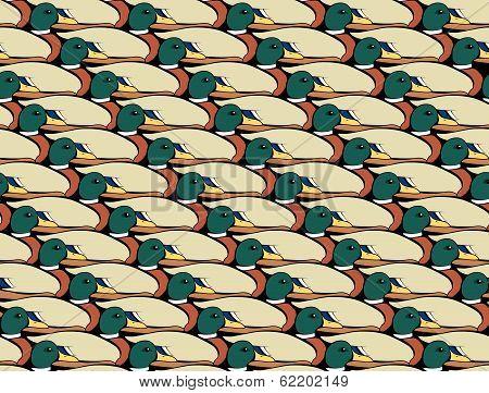Mallard Duck Collage