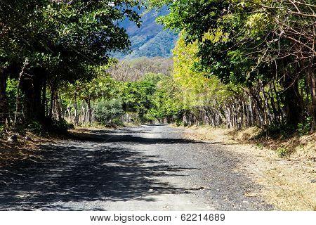 Nicaraguan Rural Road