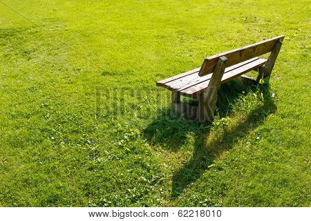Lonely bench in backyard.