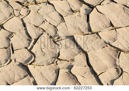 Barren ground horizontal