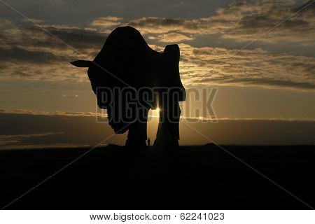 big bison statue