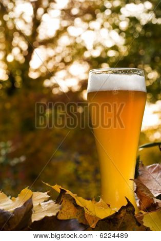 Bavarian Weissbier Between Autumnal Leaves