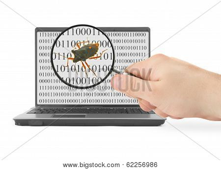 Searching For Computer Bug