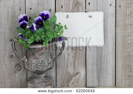 Antique vase with purple flowers (pansies) and blank sign