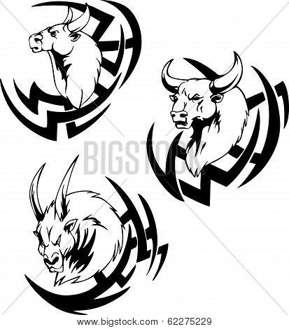 Bull Head Tattoo